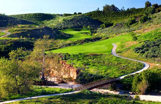 Creekside - La Bruja Verde